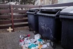 neporadek-u-popelnic-1-2019
